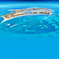 Rottnest-Island-Australia 85X85px