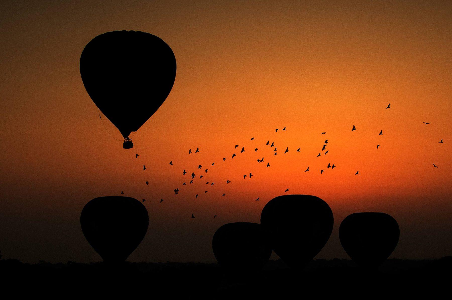 Balloons-Over-Bagan