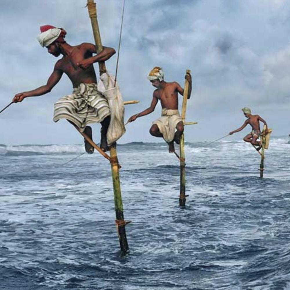 Stilt Fishermen 1000 X 1000px
