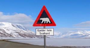 Svalbard Sign 2